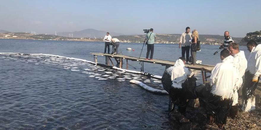 Foça'daki akaryakıt sızıntısını temizleme çalışmaları yeniden başladı