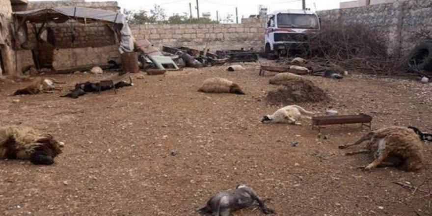 ABD cevapladı! Saldırının ardından Suriye'de neden kimyasal sızıntı olmadı?