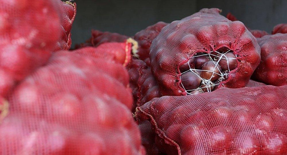 CHP'li Gök'ten soru önergesi: İthal soğanlar pişmiyor