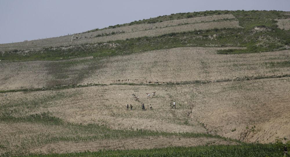 Kuzey Kore: Son 40 yılın en kötü kuraklığıyla karşı karşıyayız