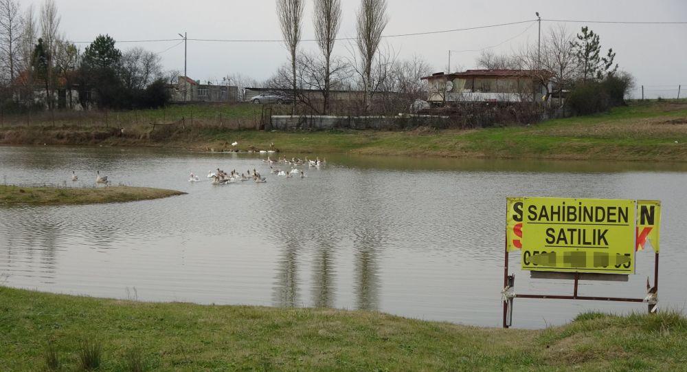 Başakşehir'de 2 milyona sahibinden satılık göl