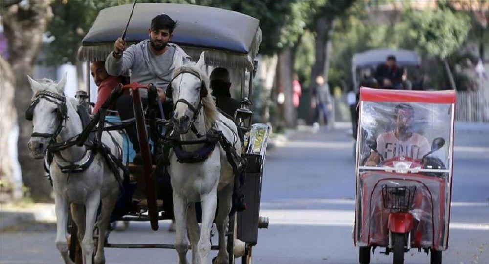 İBB, Adalar'daki at ve faytonlar için 90 milyon TL ödeyecek