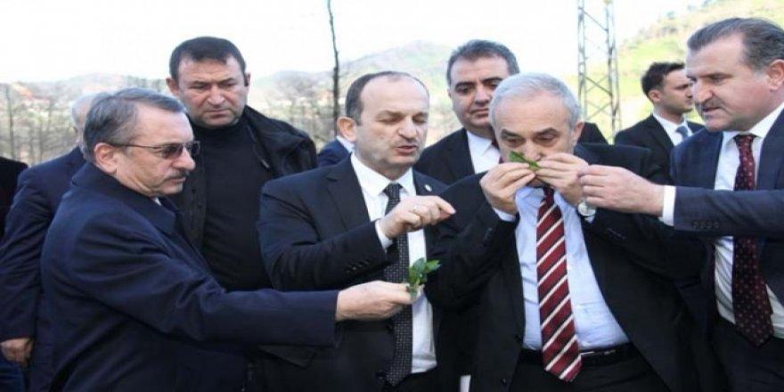 Bakan Fakıbaba: Şeker olmasa da olur ama çay önemli