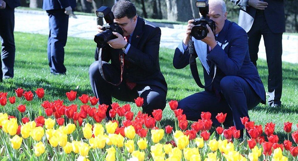 İBB Başkanı Uysal İstanbul'a ekilen lalerin maliyetini açıkladı
