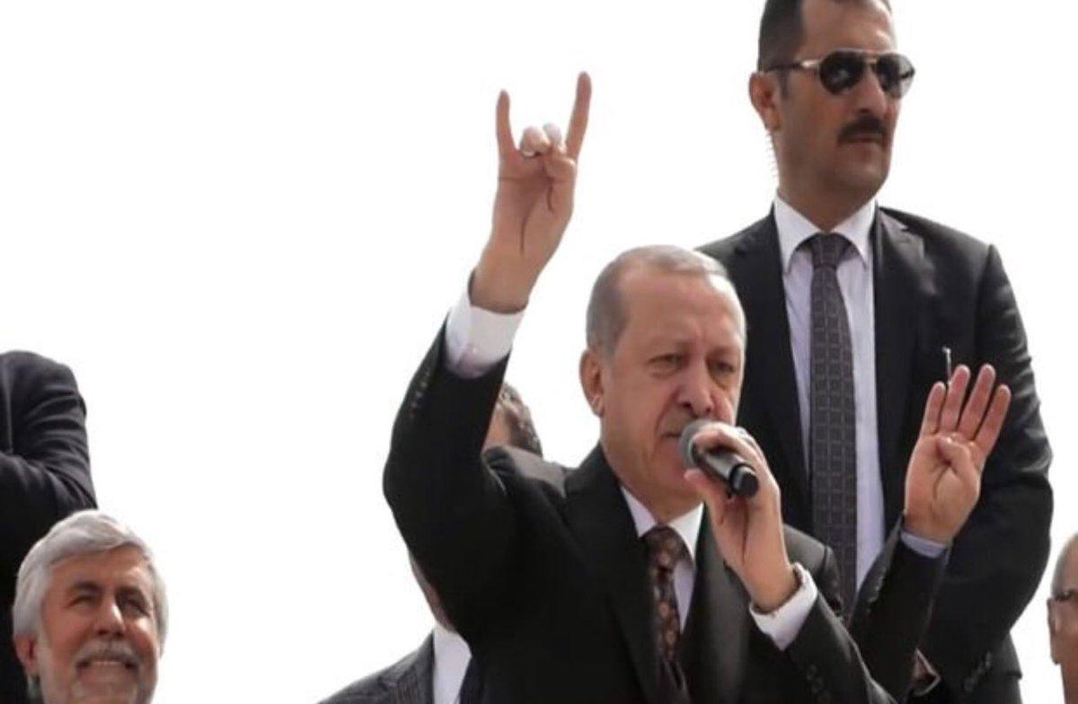 """Erdoğan """" Bozkurt işareti yaparken farkında değildim"""""""