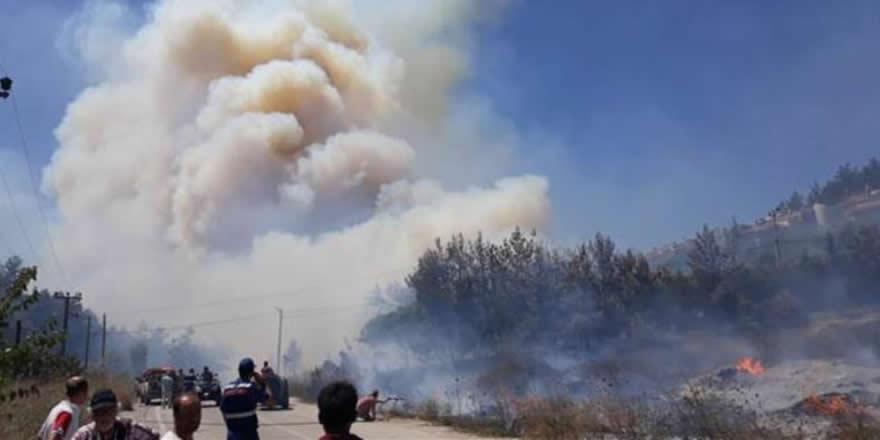 Bursa ve Antalya'da orman yangını meydana geldi